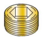 Picture of 00500PPSFB , Flush Seating Socket Pipe Plug Brass